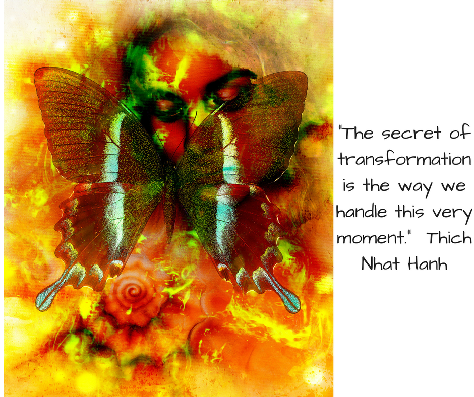 _The secret of transformation is the way we handle this very moment._ Thich Nhat Hanh