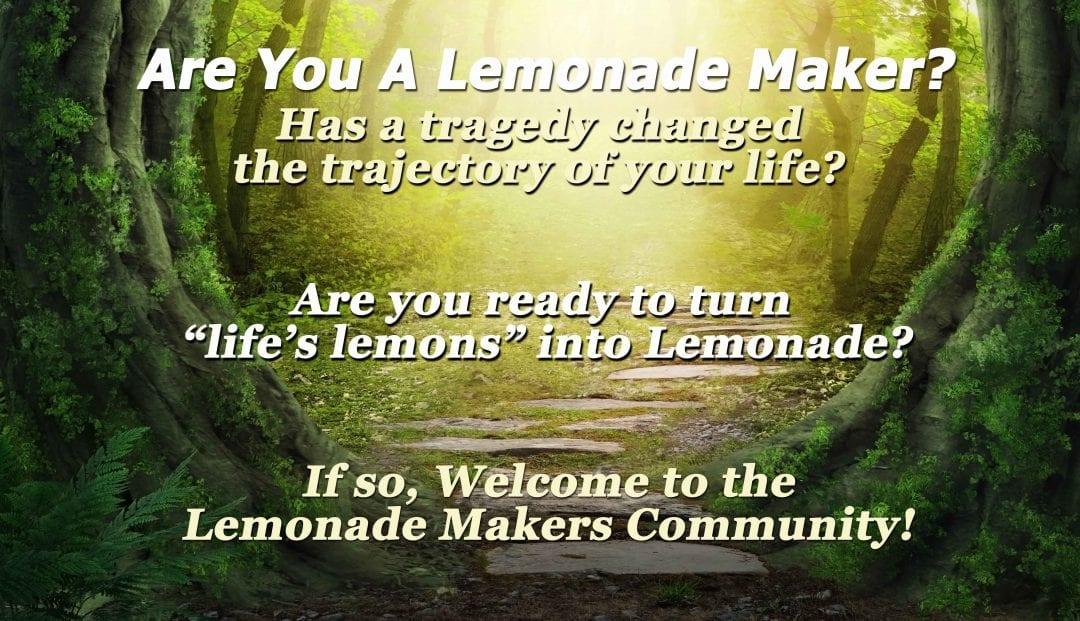 are you a lemonade maker